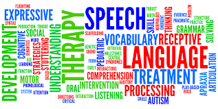Speech and language is...
